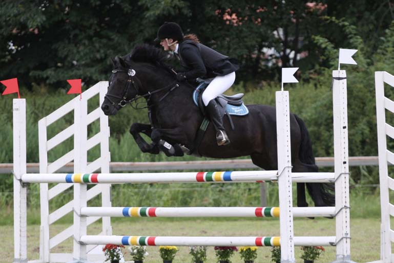 Figure 2: Nice-n'-Cherry (by Carnaby Patrick Hooligan out of Dory-Nice), winner of the Swedish Connemara championships for overheight ponies and adult riders Photo: Jenny Hagenblad