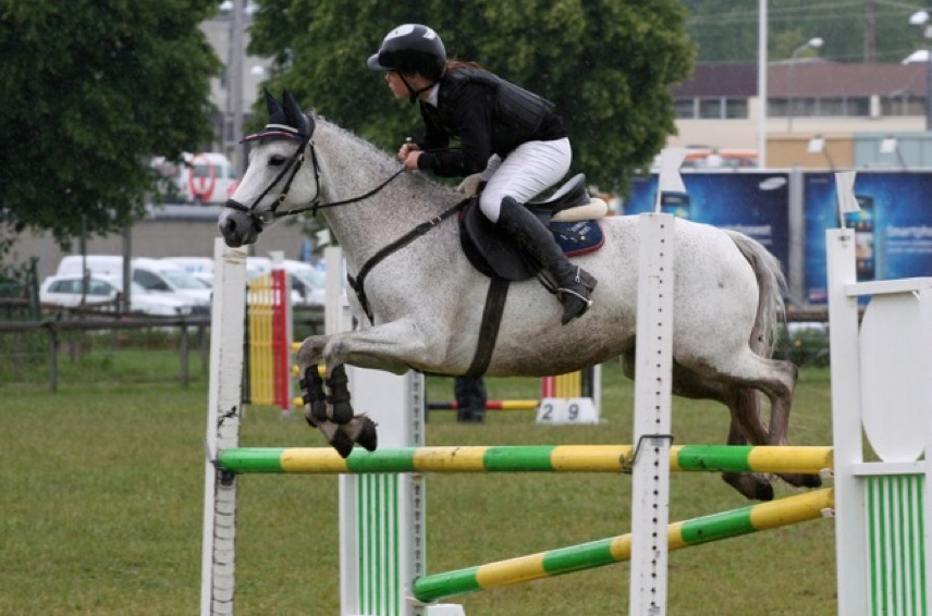 Figure 3: Brittney (by Ashfield Cathal Crobdhearg out of Hagens Grandezza), presently in place 76 of the show jumping ponies. Photo: Jenny Hagenblad