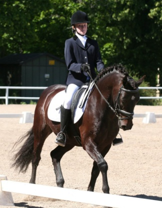 Figure 1: Backens Lotus (by Rolls Royce out of Princess Jasmin) ridden by Isabella Tovek